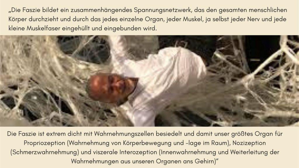 Robert Schleip Zitat Fasziennetz
